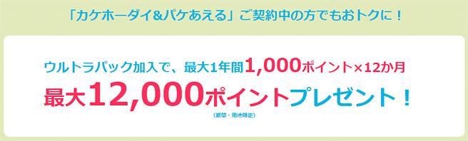 既にスマホを持っている場合は毎月1,000ポイント還元