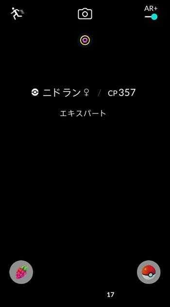 ポケモン捕獲時にARモードに切り替えると画面が真っ暗になってしまって、カメラが全く使えない状態になってしまったのです。。。
