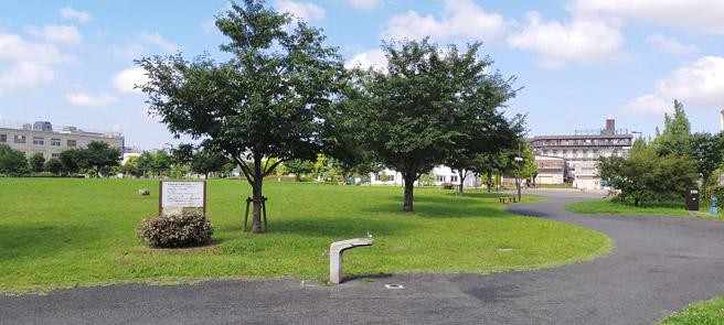 次は風景写真になります。晴れた日の公園を撮影してみました。