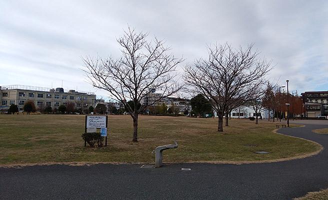 今度は、公園の風景を撮影してみます。 曇りの日とはいえ、実際よりも薄暗い感じで撮影されてしまいました。